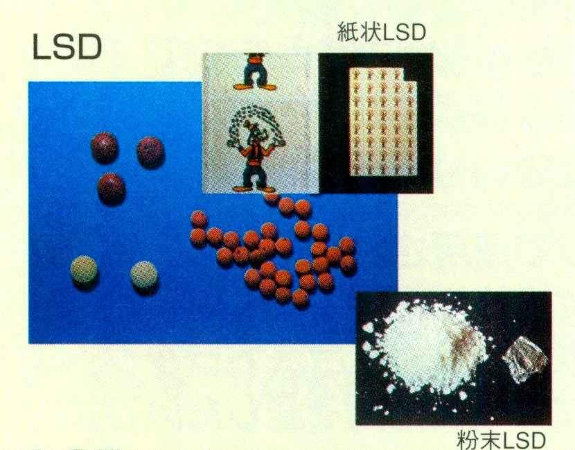 種類 麻薬