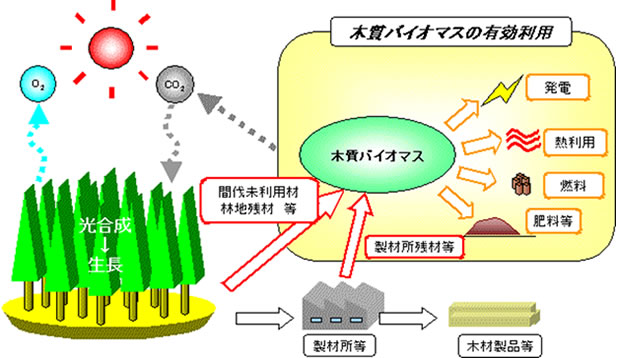 木質バイオマス利用の促進 | 和歌山県